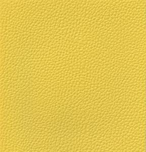 ErasisX : TOFANE   Color : #36 YELLOW