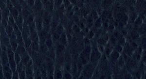 Emboss V029-E029 No.53